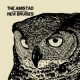 NEW BRUISES / AMISTAD, THE- Split 7